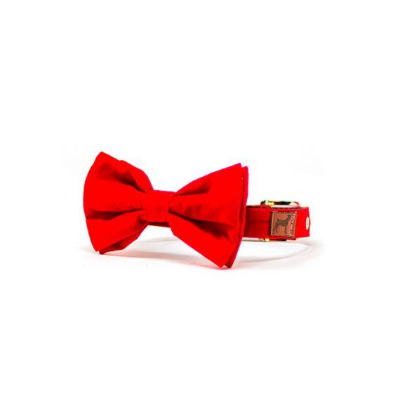 Collar Bow Tie Bingo para Gato