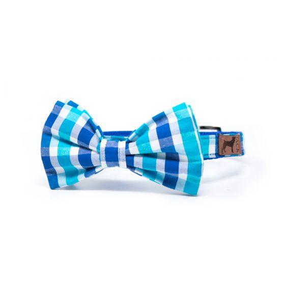 Collar Bow Tie Azúl