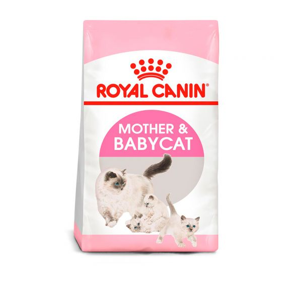 ROYAL CANIN MOTHER & BABYCAT 1.5 KG